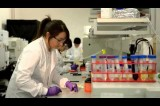 YouTube Video: MasterCard Europe Research: 'Dirty Cash' Lab Testing