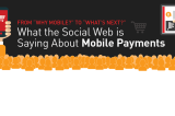 Consumer Pulse on Mobile Payments